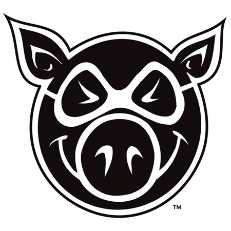 Pig skateboarding gear in stock, fast shipping!