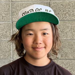 Gunjo Shiji