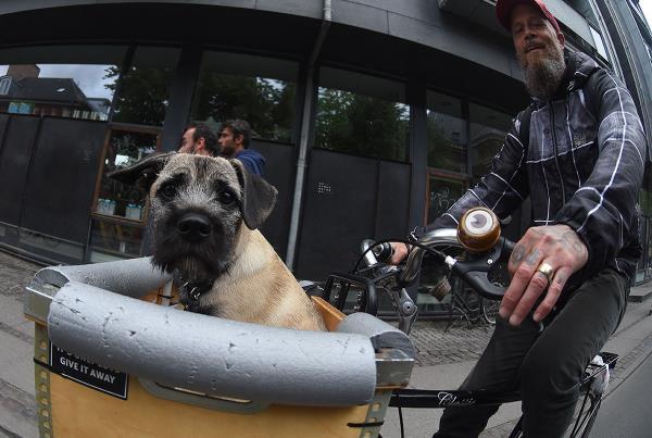 Copenhagen 2017 Extras - Biker Pup