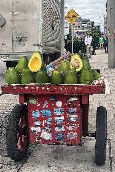 Day Off in Bogota - Avocados!