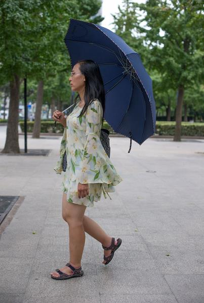 Umbrellas in Shanghai