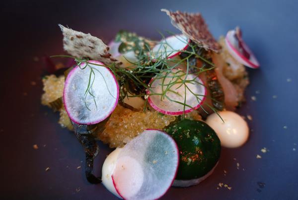 Fancy Food in Copenhagen