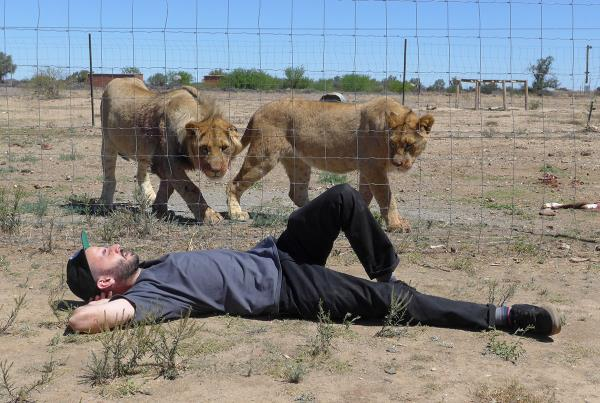 Joe Dreams of Cats on South Africa Tourist Mission