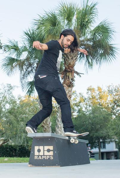 Porpe on a Front Board