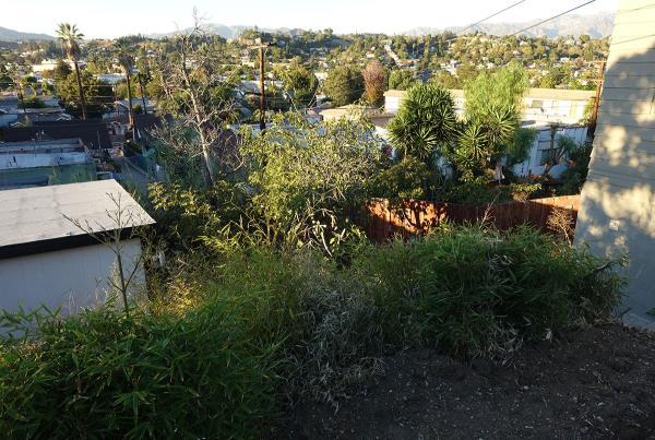 Austyn Gillette Backyard