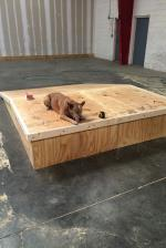 Sarge thinks it's a bangin' dog bed.