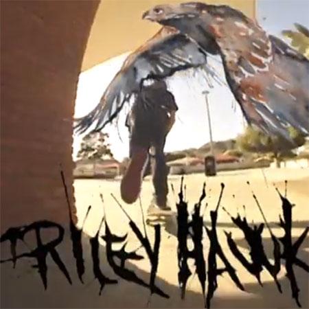 Riley Hawk Shep Dawgs 4 Part